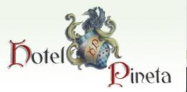 hotel-pineta-bedollo-1
