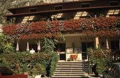 HOTEL  DA  REMO                                                                      (GRIGNO) (TN)