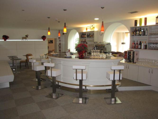 ALPEN  HOTEL  EGHEL                                                                        (FOLGARIA) (TN)
