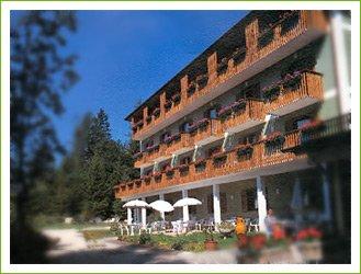 HOTEL  MONTE  VERDE                                                                                                         (LAVARONE)  (TN)