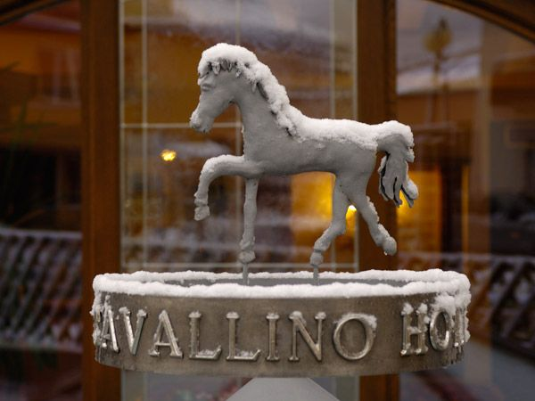 CAVALLINO LOVELY HOTEL   (ANDALO)   (TN)