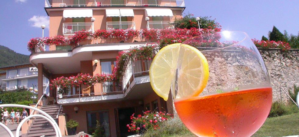 HOTEL  ACLER                                             (LEVICO TERME)    (TN)