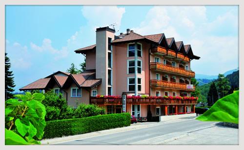HOTEL  DOLOMITI       (VATTARO)  (TN)